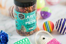How To Relax Dogs And Cats This Fourth of July With CBD Pet Treats