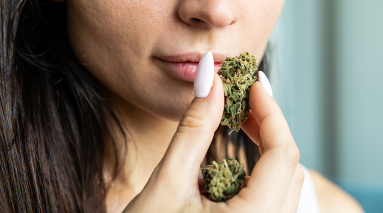 An Overview On CBD Hemp Flower & The Best Strains To Buy